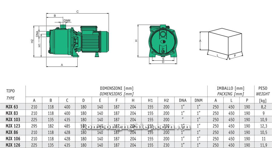 Máy bơm nước Sealand MJX chi tiết kích thước