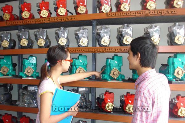 Những kinh nghiệm đáng lưu ý khi chọn mua máy bơm nước