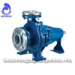 Máy bơm nước Pentax CA50-200