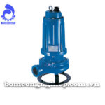 Máy bơm nước Pentax DTR 150-300