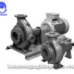 Máy bơm nước Ebara FHA 100-250