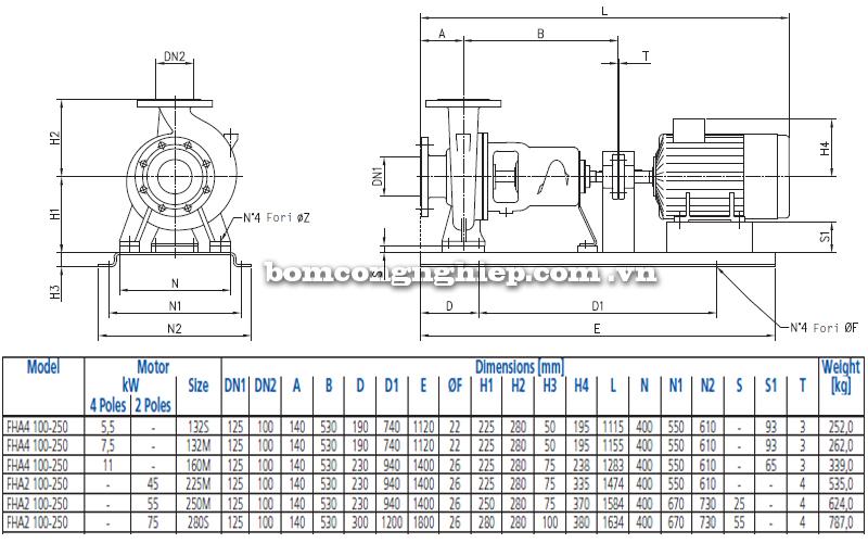 Máy bơm nước Ebara FHA 100-250 bảng thông số kích thước