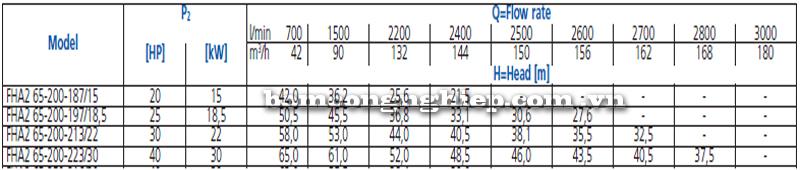 Máy bơm nước Ebara FHA 65-200 bảng thông số kỹ thuật