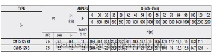Máy bơm nước Pentax CM 65-125B bảng thông số kỹ thuật