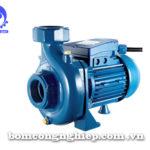 Máy bơm nước Pentax CS 200/2