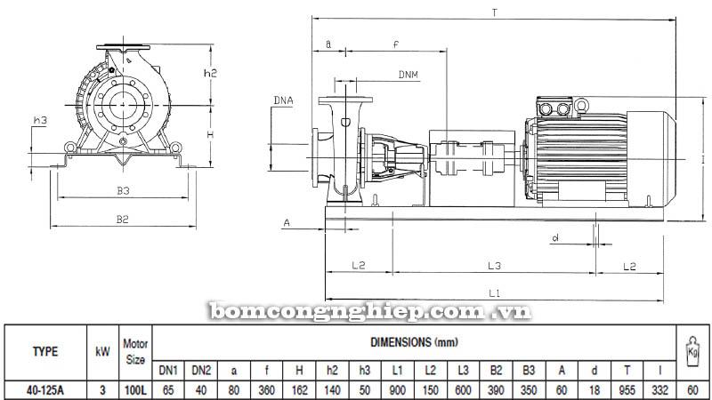Máy bơm nước trục rời Pentax CA 40-125A bảng thông số kích thước