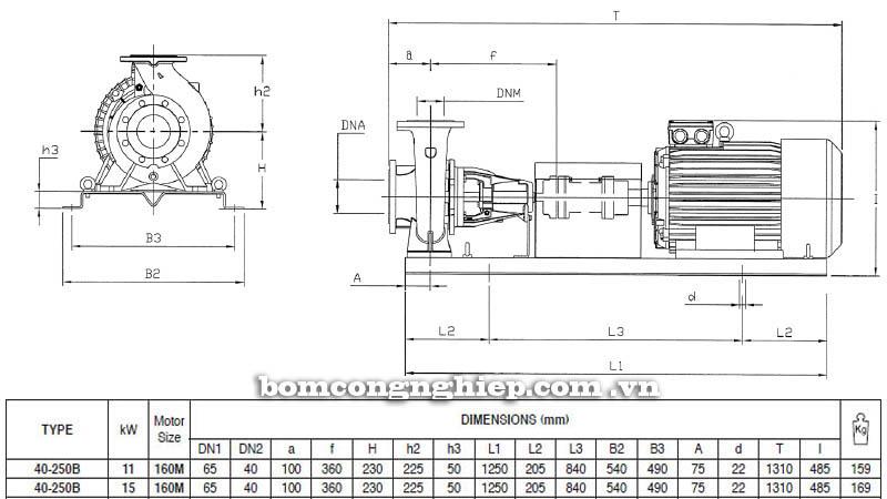 Máy bơm nước trục rời Pentax CA 40-250B bảng thông số kích thước