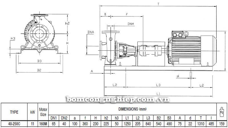 Máy bơm nước trục rời Pentax CA 40-250C bảng thông số kích thước