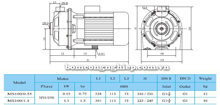 Máy bơm nước CNP MS 100 bảng thông số kích thước