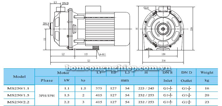 Máy bơm nước CNP MS 250 bảng thông số kích thước