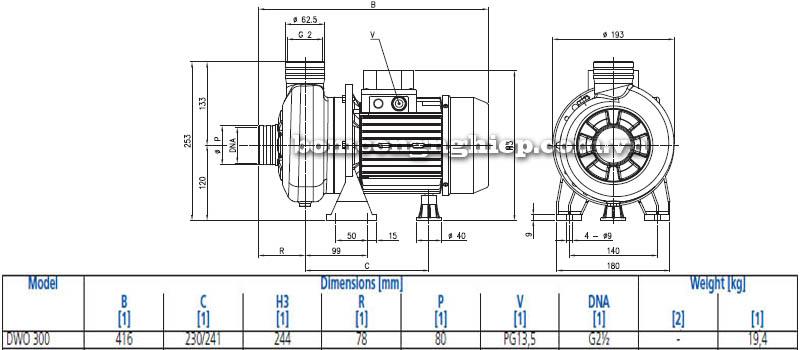 Máy bơm nước đầu Inox Ebara DWO 300 bảng thông số kích thước