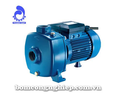 Máy bơm nước Pentax MB 150