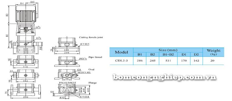 Máy bơm nước trục đứng CNP CDL2-3 bảng thông số kích thước