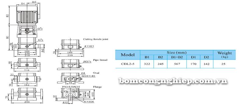 Máy bơm nước trục đứng CNP CDL2-5 bảng thông số kích thước