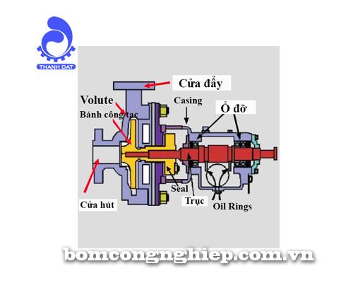 Cấu tạo máy bơm nước ly tâm