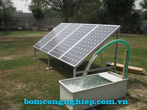 Máy bơm nước năng lượng mặt trời