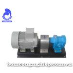 Bơm bánh răng MSL 1200RV-3800RV