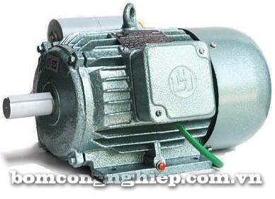 Động cơ điện xoay chiều 1 pha