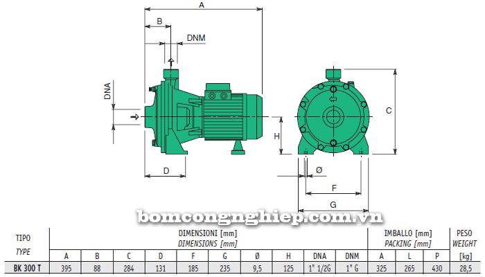 Máy bơm nước 2 tầng cánh sealand BK T300 bảng thông số kích thước
