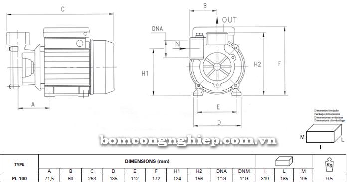 Máy bơm nước đầu chuột Foras PL-100 bảng thông số kích thước
