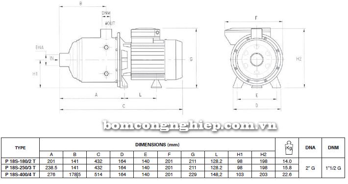 Máy bơm nước đầu inox Foras Plus 18S bảng thông số kích thước