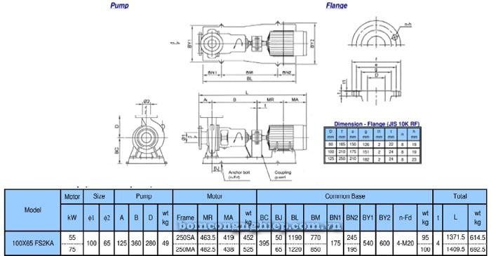 Bơm trục rời Ebara FSA 100x65 bảng thông số kỹ thuật