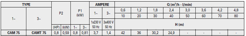 Máy bơm nước bán chân không Pentax CAM 75 bảng thông số kỹ thuật