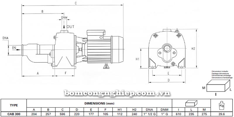 Máy bơm nước Pentax CAB-300 bảng thông số kích thước