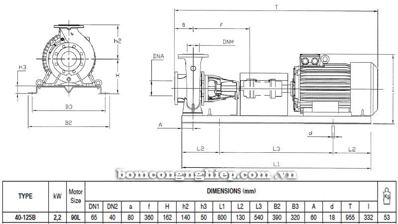 Máy bơm nước trục rời Pentax CA 40-125B bảng thông số kích thước