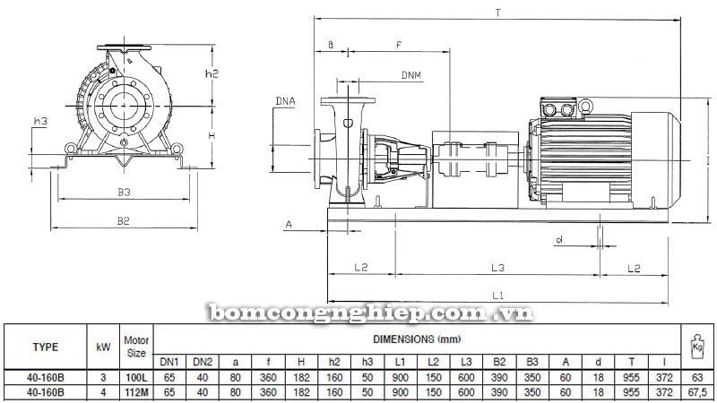 Máy bơm nước trục rời Pentax CA 40-160B bảng thông số kích thước