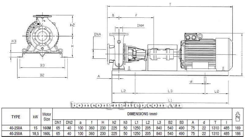 Máy bơm nước trục rời Pentax CA 40-250A bảng thông số kích thước