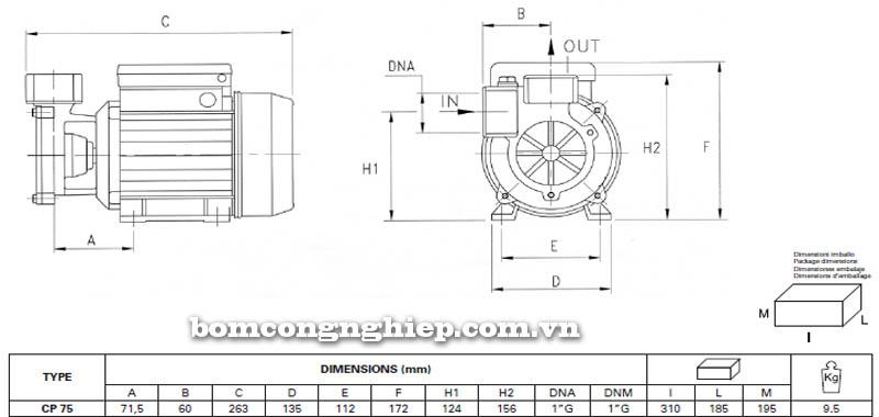 Máy bơm nước Pentax CP 75 bảng thông số kích thước