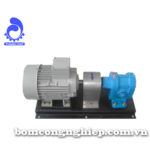 Bơm bánh răng MSL 150RV-1000RV
