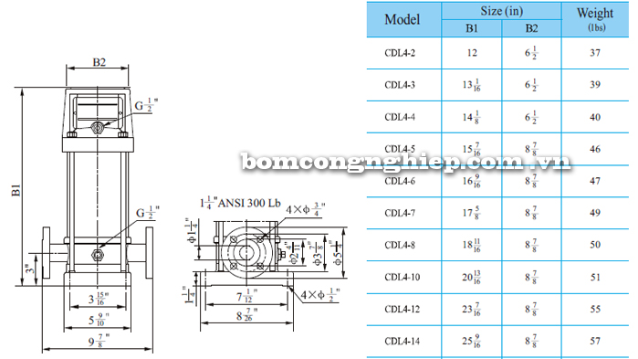 Máy bơm trục đứng CNP CDL/CDLF 4-14 bảng thông số kích thước