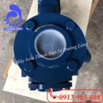 Đầu hút máy bơm nước Pentax CA 100-250B 100HP