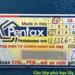 Phân biệt máy bơm Pentax chính hãng qua tem