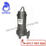 Tìm hiểu máy bơm nước thải Ebara DVS