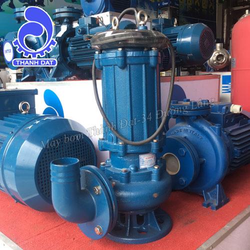Máy bơm nước thải Inter 100WQ60-12-4/2