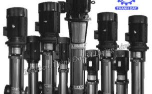 Hướng dẫn chọn mua máy bơm trục đứng Ebara chuẩn xác nhất