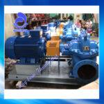Máy bơm hai cửa hút Kaiquan KQSN300-M6/456 220kW