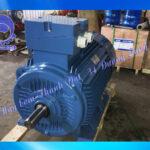 Động cơ điện Vicky VY-90L-4 2HP