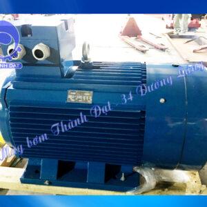 Động cơ điện Vicky VY-90S-2 2HP